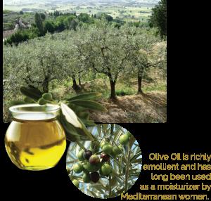 Olive Oil Organic Australian ingredient in baby cream soothe dry skin