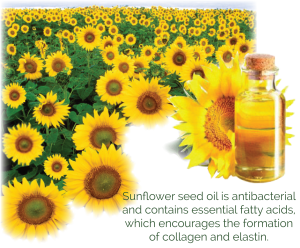 Australian Organic Sunflower Seed Oil used in skincare for eczema, rash, dry skin